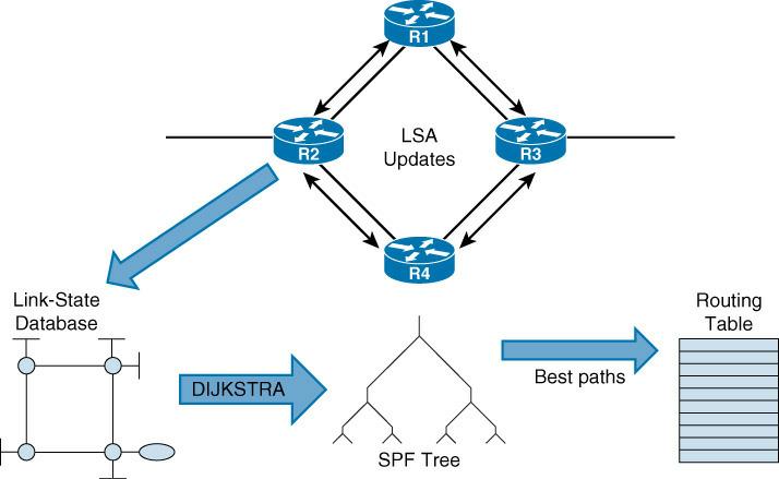 OSPF Operation
